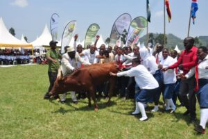 Kisoro Vision SS receives the prize of a Cow, courtesy of snatching the best/First position in Uganda.